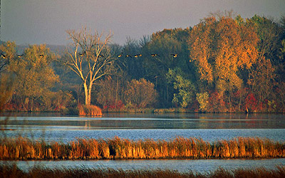 Horicon Marsh, photo by Jack Bartholmai