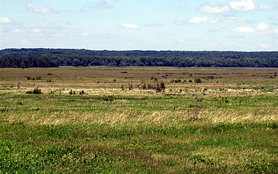 George W. Mead Wildlife Area, photo by Andy Paulios