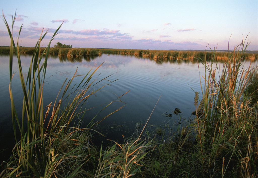 Horicon Marsh, photo by US FWS