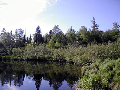 Waupee Lake, photo by Yoyi Steele