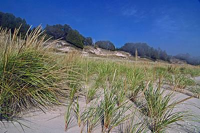 Whitefish Dunes, photo by Robert Howe